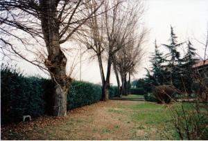 Prato1 95
