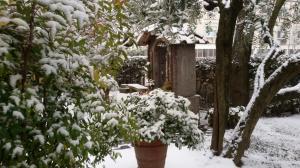 Neve marzo 2018 (17)