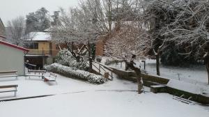 Neve marzo 2018 (26)