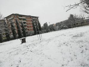 Neve marzo 2018 (33)