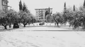 Neve marzo 2018 (40)
