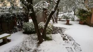 Neve marzo 2018 (7)