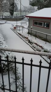 Neve marzo 2018 (8)