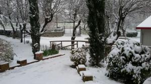 Neve marzo 2018 (9)